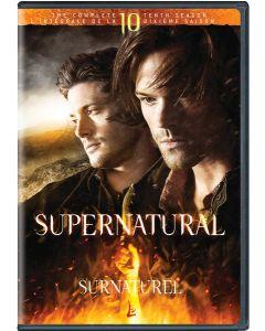 Supernatural: S10 (BIL/DVD)