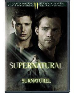 Supernatural: S11 (BIL/DVD)